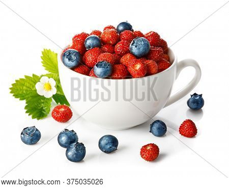 Berry wild strawberry and blueberry in cup with green leaf and flower. Fruity still life. Healthy eating. Isolated on white background.