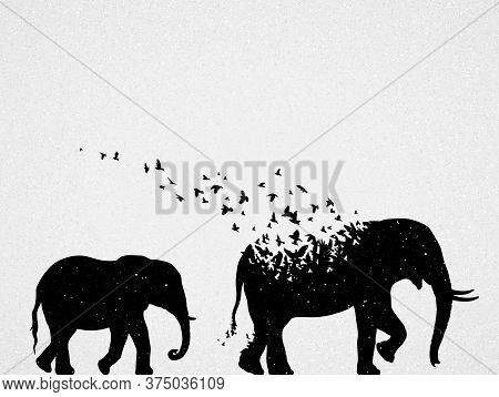 Elephant Mom And Child Silhouettes, Flying Birds. Endangered Animal Family. Life And Death. Wildlife
