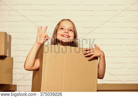 How To Live Better. Little Girl With Box. Moving To New Apartment. Perfect Purchase. Moving Concept.