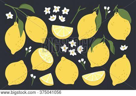 Set Of Whole, Cut In Half, Sliced On Pieces Fresh Lemons . Citrus Fruit Collection With Lemon Peel,