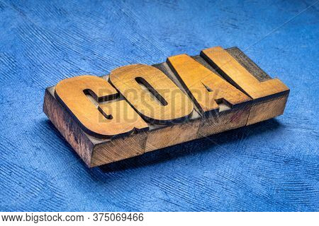 goal word  in vintage letterpress wood type against blue textured paper, business, education and personal development concept