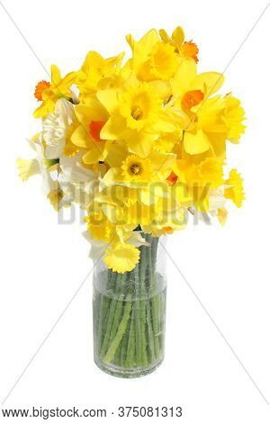 A Bunch Of Yellow And White Daffodils In A Glass Vase Against A White Background