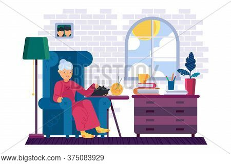Resting Grandmother With A Cat At Home
