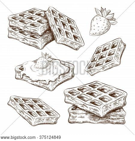 Hand Drawn Cute Waffles Isolated On White. Vector Sketch Of Belgium Wafers In Vintage Engraved Style