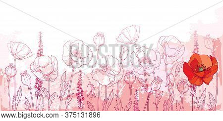 Vector Field With Outline Poppy Flower, Bud, Leaves And Seed Pod In Pink And Red On The Pastel Textu