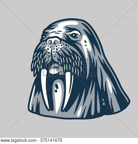 Ocean Walrus For Marine Nautical Logo Design