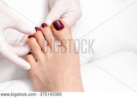 Top View Of Human Hands In Protective Gloves Holding Woman Foot With Painted Toenails In Dark Red Co