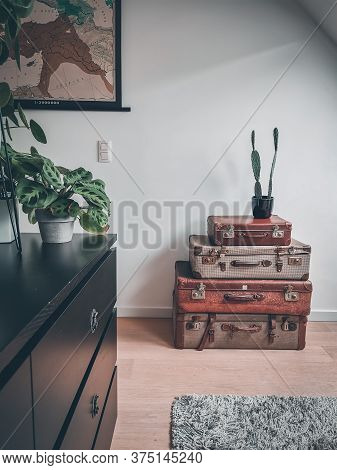 Vintage Interior With Reused Old Suitcases And Retro Plants Such As An Opuntia Cactus