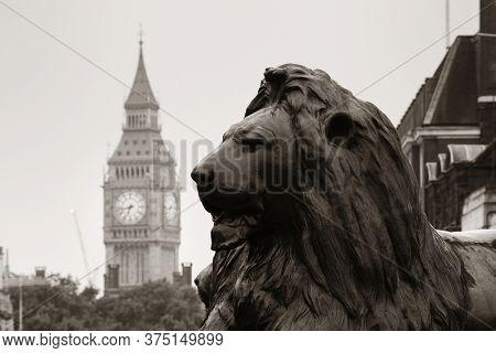 Trafalgar Square lion statue and Big Ben in London in BW