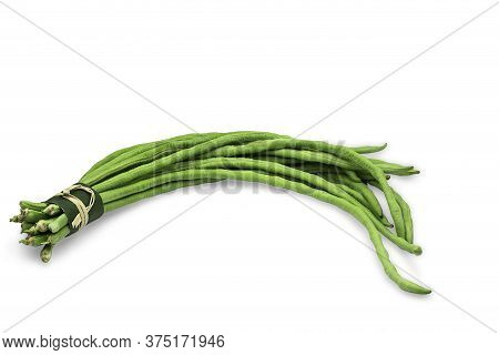 Raw Organic Yard Long Bean In Rustic Bundle On White Isolated Background With Clipping Path. Fresh Y