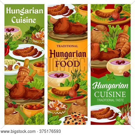 Hungary Cuisine, Vector Hungarian Food Sausages With Sauce And Onion, Salad With Egg, Vegetable Stew