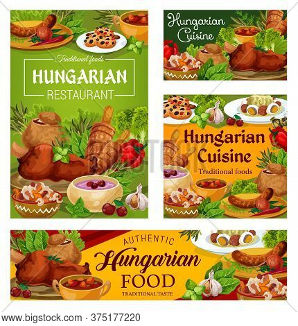 Hungary Cuisine Vector Braised Cabbage With Pepper, Cherry Soup And Sweet Cookies With Dried Fruits.