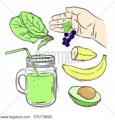 Smoothie How Make Healthy Eating Nutrition Beverage Recipe Paleo Keto Organic Diet Nature Vector Ill