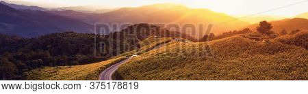 Panorama Beautiful Landscape Of Mountain In Twilight Time Nature Flower Tung Bua Tong Mexican Sunflo