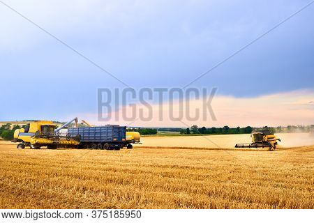 Overloading Grain From The Combine Harvesters Into A Grain Truck In The Field. Harvester Unloder Pou