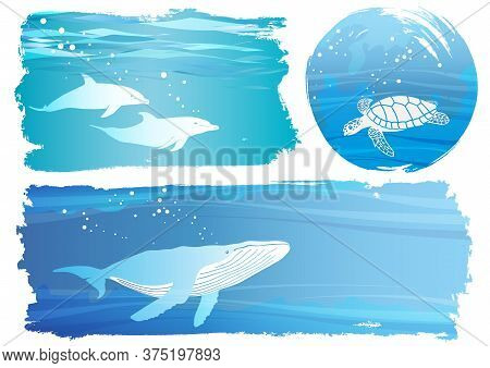 Set Of Undersea Background Illustrations With Dolphins, A Turtle, And A Whale Isolated On A White Ba