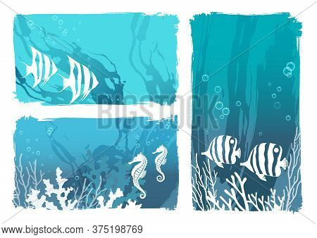 Undersea Creatures Vector Illustration Set With Tropical Fishes And Sea Horses Isolated On A White B