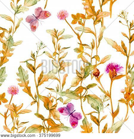 Autumn Meadow, Prairie. Floral Sprigs, Flowers. Vintage Seamless Spacial Pattern. Watercolor