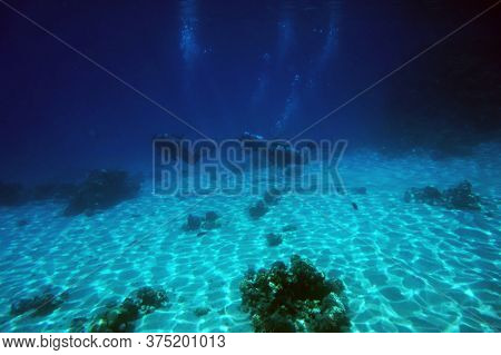 Divers And Coral Reef In Egypt, Makadi Bay