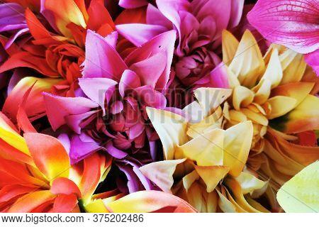 Plastic Color Flowers