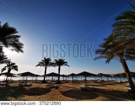 Beach In The Egypt
