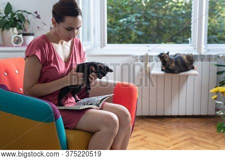 Woman Relaxing At Home With Her Kitten. Domestic Lifestyle. Woman Relaxing On Chair With Kitten. Hip