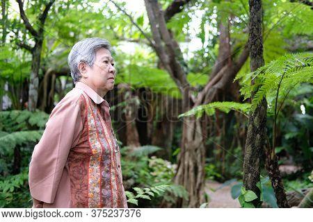 Elder Woman Resting In Garden. Elderly Female Relaxing Outdoors. Senior Leisure Lifestyle