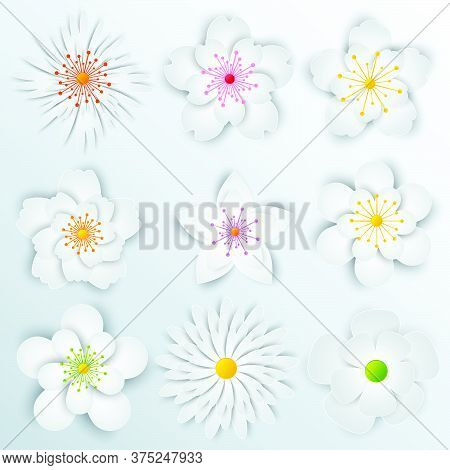 01-paper Flowers  Set Isolated  Vector Illustration.