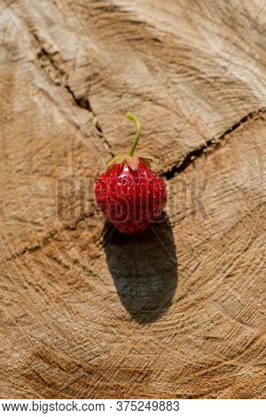 Strawberry Berry Lies On A Wooden Table Surface In The Open Air. Summer Harvest.