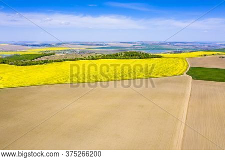 Aerial View Of Fields During Springtime: Canola Fields, Forest Trees And Seeded Fields