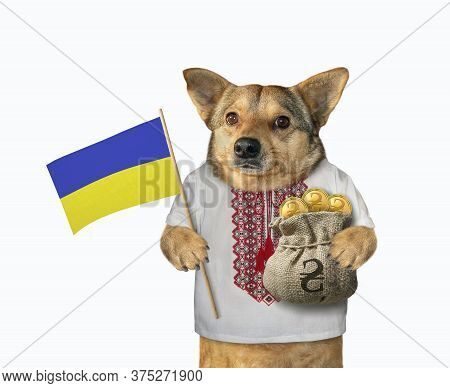 The Beige Dog Patriot In Ukrainian Traditional Shirt Is Holding A Ukrainian Flag And A Sack Full Of