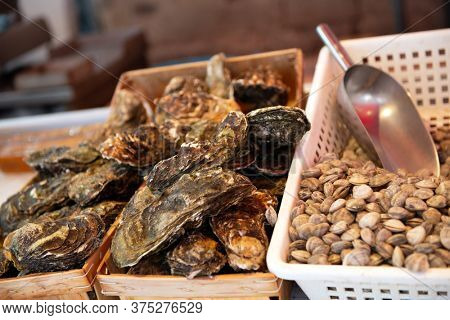 Fresh oysters and shells sale on outdoor market in Sicily, soft focus. Restaurant delicacy. Saltwater oysters
