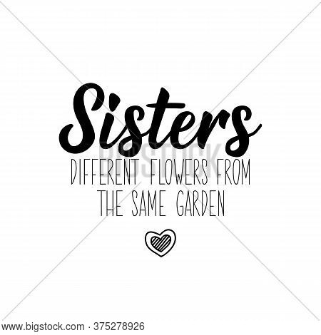 Sisters Different Flowers From The Same Garden. Lettering. Can Be Used For Prints Bags, T-shirts, Po