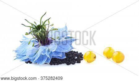 Nigella sativa flower and black cumin oil capsules on white background