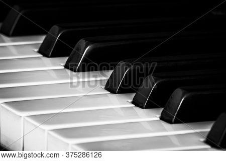 Black And White Ebony And Ivory Piano Keys At An Angle