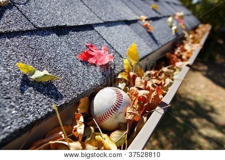 Rain gutter full of autumn leaves with a baseball