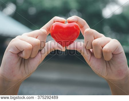 Hands Of Child Holding A Red Heart On A Wooden Table For Love And Concern Of All Family Members. Ado