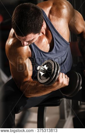 Fitness in gym, sport and healthy lifestyle concept. Handsome athletic man in blue shirt making exercises. Bodybuilder male model training biceps muscles with dumbbell.