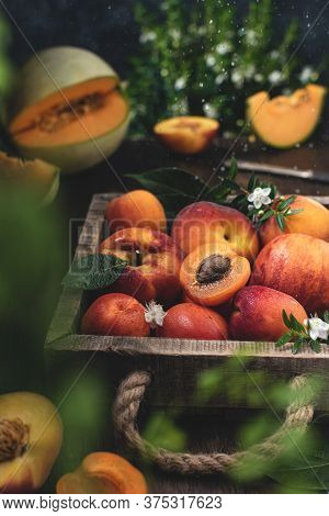 Rustic Summer Fruits Harvesting, Box With Peaches And Apricots, Orange Melon