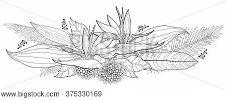 Vector Bouquet Of Outline Tropical Strelitzia Reginae Or Bird Of Paradise Flower Bunch And Palm Leaf