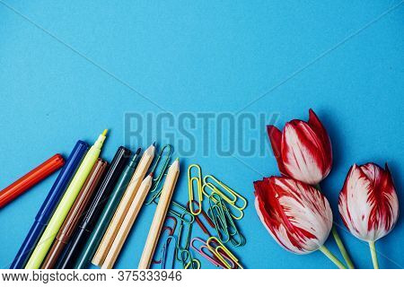 School Pictures For Background. Photo Of Pencils And Felt-tip Pens With Flowers On A Blue Background