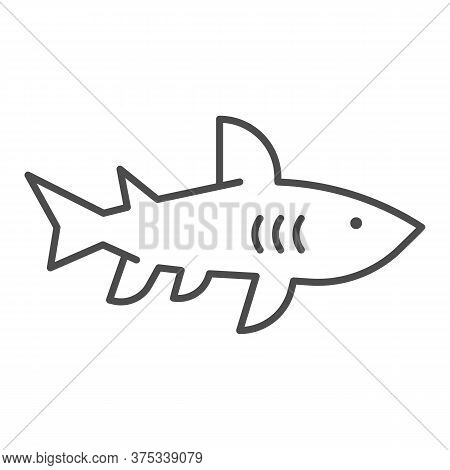 Shark Thin Line Icon, Marine Concept, Danger Predatory Fish Sign On White Background, Shark Silhouet