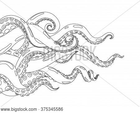 Octopus. Hand Drawn Background With Octopus. Cartoon Underwater Marine Animal. Coloring Vector Illus