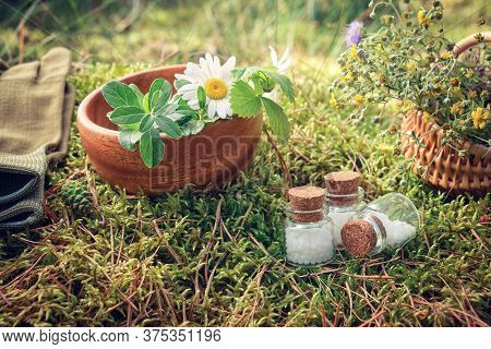 Three Bottle Of Homeopathic Globules, Wooden Bowl And Basket Of Medicinal Herbs, Gloves On A Moss In
