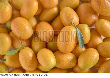 Fresh Kumquats, Small Exotic Fruits, Filling The Frame. Citrus Background. Top View.
