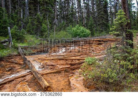 Water Flowing Down A Hill Dyed By Ochre.   Kootenay National Park Bc Canada