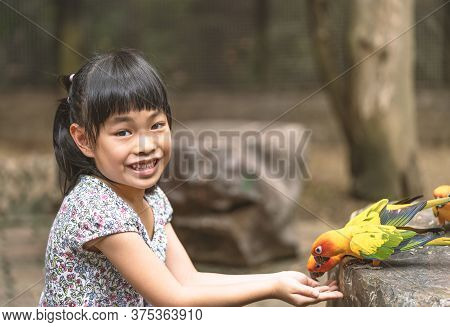 Asian Child Girl Is Feeding Birds
