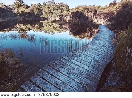 Boardwalk on the lake in tropical forest, New Zealand