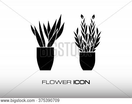 Two Luxury And Classy Flower Icon. Designed With Black Monochrome Style In Trendy Flat Isolated On W