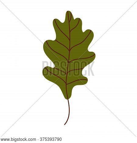 Oak Leaf Isolated On A White Background. Fallen Oak Leaf. Flat Vector Illustration
